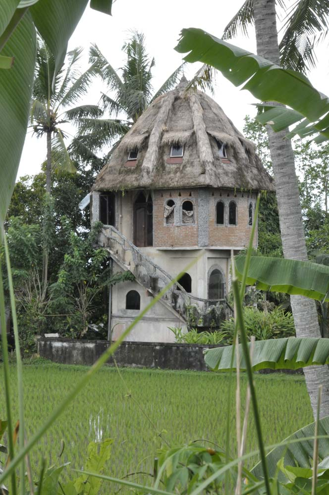 http://annablackmore.files.wordpress.com/2011/02/thatched-house-in-paddies.jpg